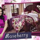 Sprei Star Roseberry