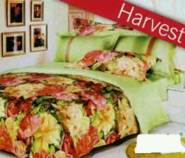 Sprei Star Harvest